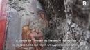 La fresque de cette déesse a été retrouvée presque intacte dans les ruines de Pompéi