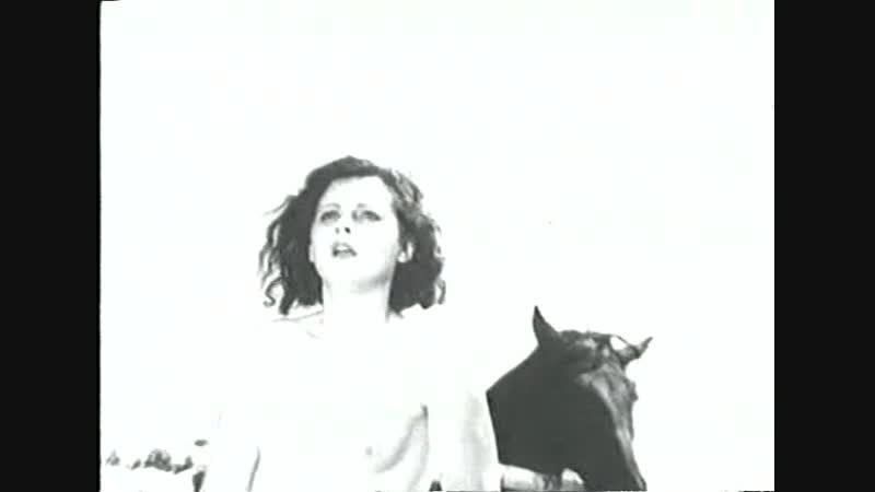 От киноавангарда к видеоарту Безумная любовь