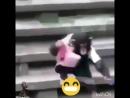 обезьяна тянет собаку за поводок , смешное видео , приколы