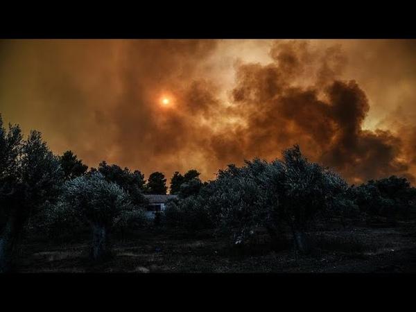 Εύβοια: Αισιοδοξία για την εξέλιξη της πυρκαγιάς