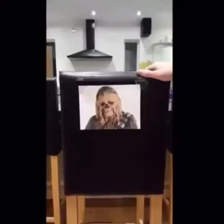 Chewbacca's chair · coub, коуб