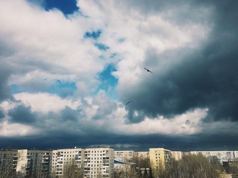 Елена Серебрякова | Барнаул