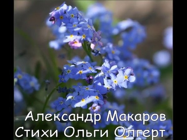Февраль, как апрель. Александр Макаров, Ольга Олгерт.