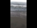 Мамка сняла на море