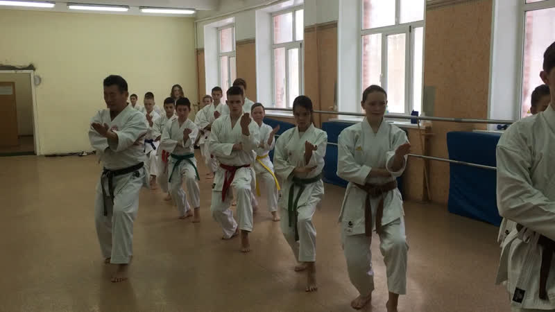 Семинар по технике каратэдо Сито-рю в Егорьевске, Томами Бассай. Seminar on the Karate-do Shito-ryu technique in Yegoryevsk,