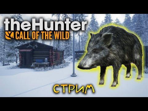 КАБАНЫ УШЛИ А ОЛЕНИ ПОТЕРЯЛИСЬ The Hunter Call of the Wild 7