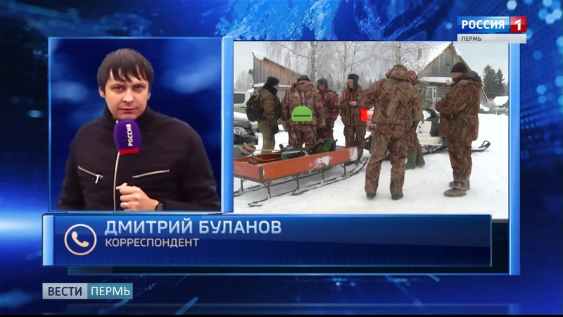 В Пермском крае объявили охоту на «черных лесорубов»