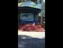 Инна Чернышова (соло на саксофоне) концерт в парке