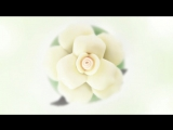 D-G DOLCE Floral Drops - A Dolce Day.mp4