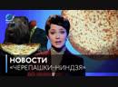 Новости на Кино ТВ «Черепашки-ниндзя»