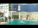Лемминги. Севернокорейская сборная по прыжкам в воду