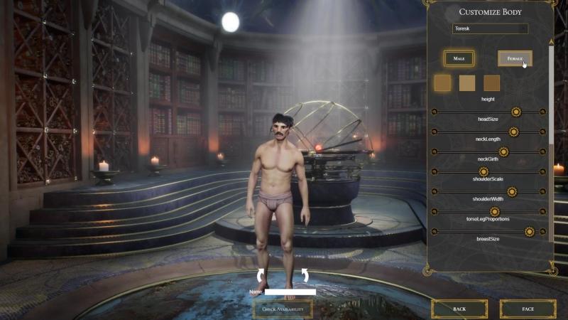 Chronicles-of-Elyria_Pre-Alpha- Модели тела и создания персонажа v2