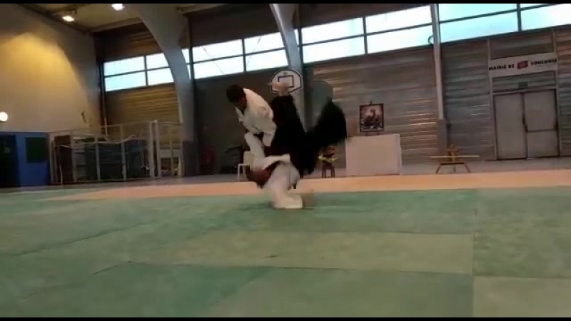 Stage Aikido en Toulouse (Francia) 11_ 12_ y 13 Mayo 2018._00.mp4