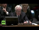USA Russia vetoes UN resolution on Srebrenica massacre