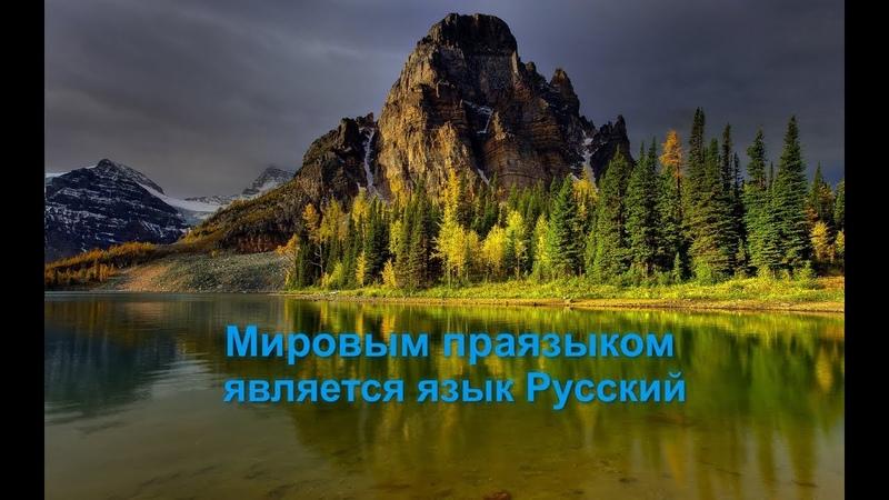 Мировым праязыком является язык Русский Александр Драгункин