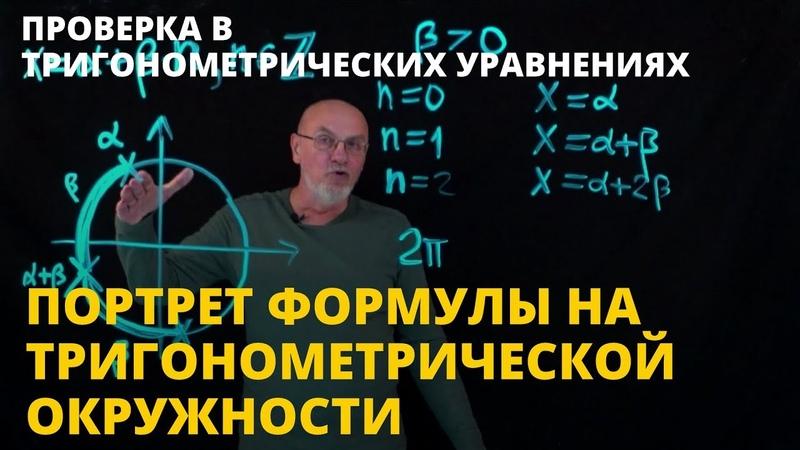 Портрет формулы на тригонометрической окружности | Проверка в тригонометрических уравнениях