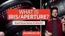 How To Expose An Image Everything about Iris Aperture Shutterstock Tutorials