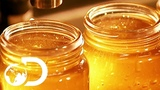 🔴HONEY | How It's Made
