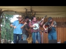 Hillbilly Gypsies at Lyons Fiddle Festival (2017)