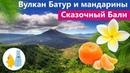 Остров Бали вулкан Батур, туристическая мафия и бесплатные мандарины