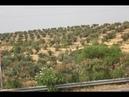 Африканский пейзаж из окна автобуса по дороге из Эль Джема в Хаммамет Тунис