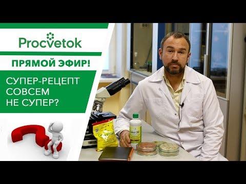Прямая трансляция 08.12 в 12:00. Рецензия на рецепт создания ЭМ-препарата от канала Урожайный огород