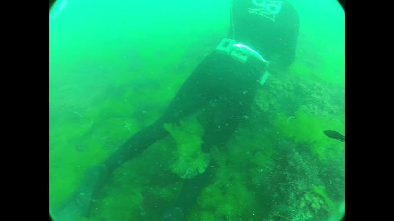 Подводная охота. Хер.маяк. Слава [SMi] 14.07.2012
