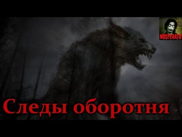 Истории на ночь - Следы оборотня