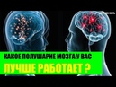 Какое полушарие мозга у Вас лучше работает?