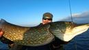 Троллинг на стальку здоровенным силиконом Трёхдневная рыбалка с ночевкой на Днепре