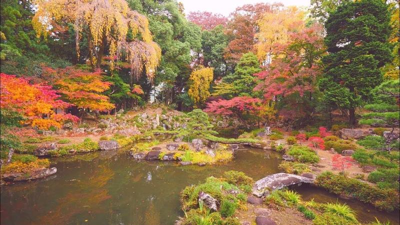 JG 4K HDR 山梨 恵林寺の紅葉(名勝,重文) Yamanashi,Erinji in Autumn(Scenic Beauty,Cultural Property)