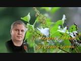 Валерий Власов За гранью мечты