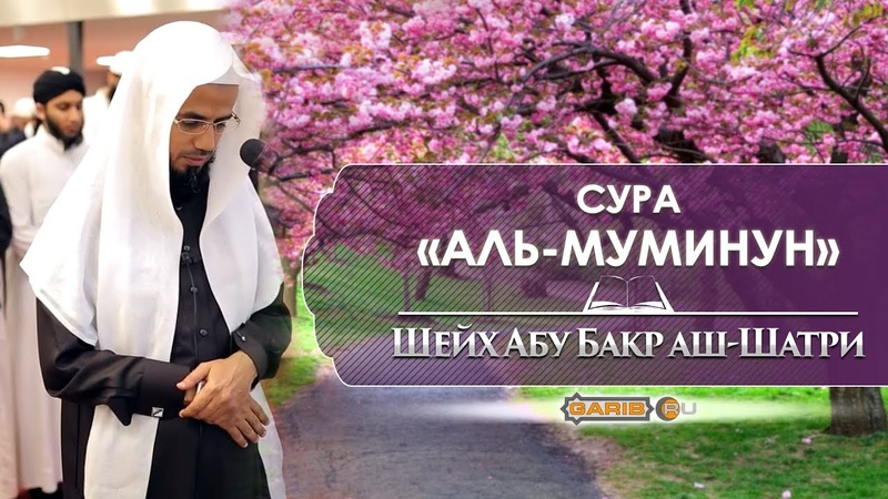 ᴴᴰ Сура Аль Муминун Шейх Абубакр аш Шатри