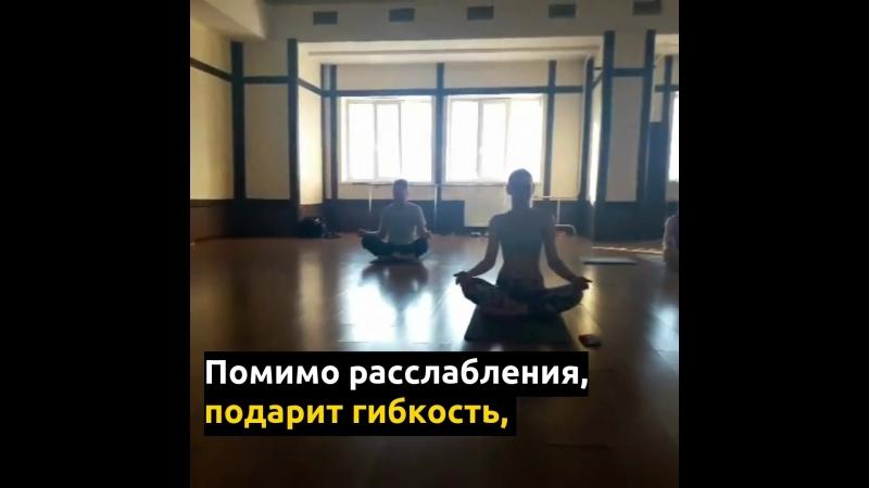 Йога / СЦ Динамит / С. Кресель