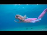 Ева Польна - Глубокое Синее Море