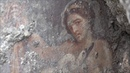 SCOPERTE / Nuovo splendido affresco a Pompei: ecco Leda e il cigno / 2
