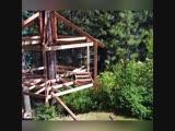 Дом на дереве - оригинальная идея -Проект « Дача »