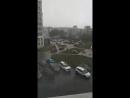 Дарина Волковинская Live