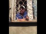 Предполагаемая хозяйка собаки, которая на днях покусала маленького мальчика в Ангарске