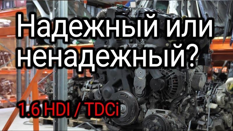 Надежный или ненадежный? Обсуждаем и показываем проблемы двигателя 1.6 HDI / TDCI (DV6TED4)