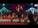 Питбули в цирки! собаки