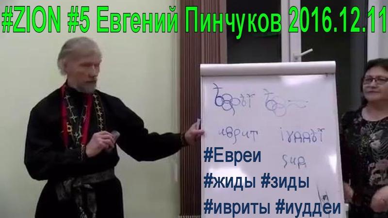 ZION 6 Евгений Пинчуков 2016.12.11 Евреи жиды зиды ивриты иуддеи - попытка избежать наказание