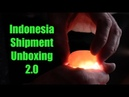 Reptile Reality- Indo Unboxing 2.0