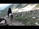 Noor Maha Enjoy Whipping Horse