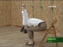 Йога помогает бороться с офисным остеохондрозом 20 06 18