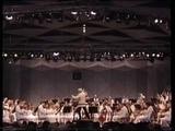 Leonard Bernstein zum Siebzigsten (Bernstein at 70!) - Tanglewood, 1988 (VHS)