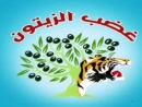Wrath of Olives punished a occupier of Jabhat al ShamLevant Front in Azaz