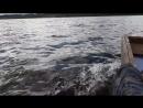 На Кишемском озере