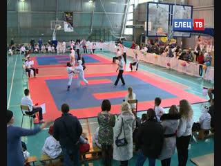 Открытое Первенство и Чемпионат города Ельца по Всестилевому каратэ прошли в минувшие выходные #ЗдоровыйрегионЕлец
