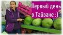 Первые впечатления от Тайваня - еда и аренда байка | Taipei | Taiwan